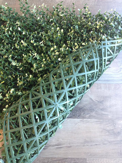 Διακοσμητικός φραχτης Πυξαρι 50χ50 Grass Experts