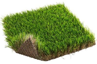 Cedrus 52mm χλοοταπητας κηπου Grass Experts