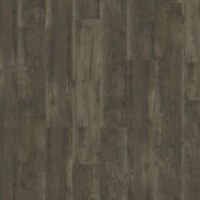 PRIMARY PINE DARK BROWN